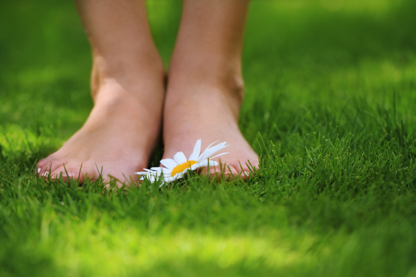 Pair Of Feet In The Grass Beside A Yellow Flower